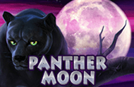 Panther Moon кращі слоти